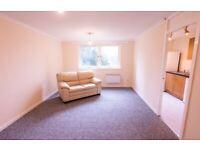 Beautiful refurbished 1 bedroom Studio flat Cumbernauld G67 2QD Great Value