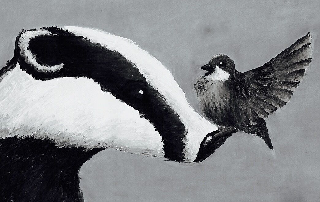 Badger & Bird