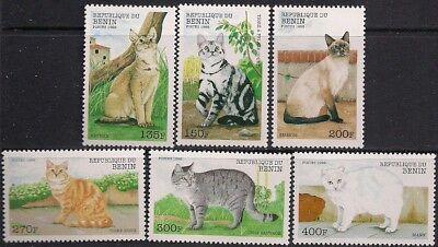 Benin Stamp - Cats Stamp - NH