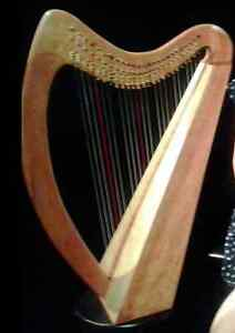 Therapy Harp For Sale, 25 strings fully levered Gatineau Ottawa / Gatineau Area image 4