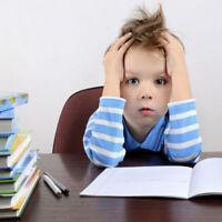 orthopédagogie /aide aux devoirs ( primaire et secondaire)