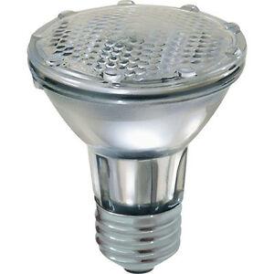 Ampoules halogènes Globe