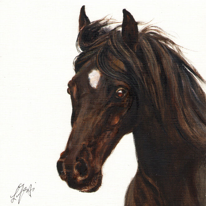 Original Oil HORSE Portrait Painting PONY Artwork Canvas from Artist SIGNED