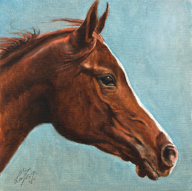 Original Oil HORSE Portrait Painting PONY Art Artwork on Canvas Wild Brown