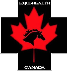 Equi Health Equine Emergency a First Aid Courses