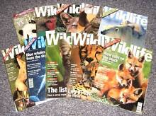 10 BBC Wildlife Magazines Westmead Parramatta Area Preview