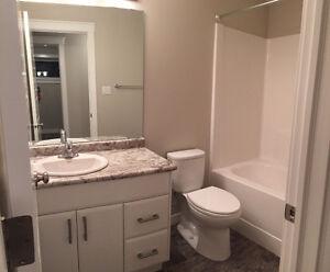 Two Bedroom Basement Suite for Rent Regina Regina Area image 6