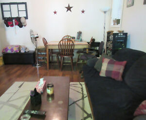Spacious 1 bedroom apt available Dec or Jan 1 Kingston Kingston Area image 1