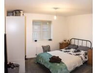 Double room in ELEPHANT AND CASTLE SUPER CHEAP !!! 2 rooms in the same flat !!
