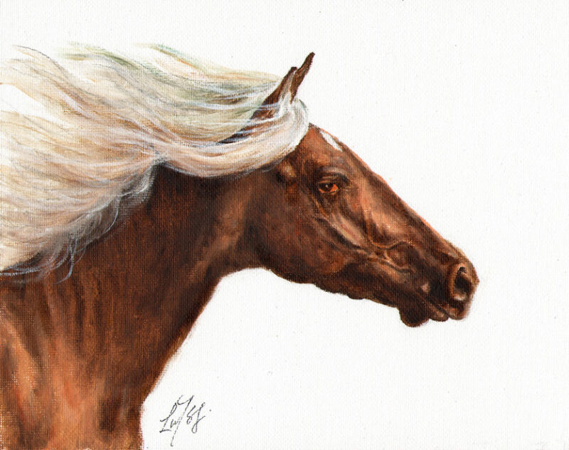 Original Oil HORSE Portrait Painting PONY Artwork ARTIST SIGNED Brown Stallion