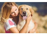 If you have experience with animals Pawshake are looking for reliable pet sitters in Wigan!