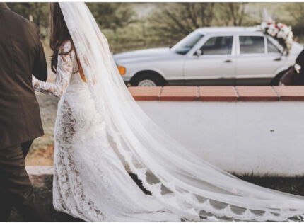 1tier mantilla lace edge wedding veil in cathedral length $180