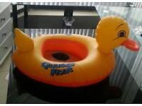 Baby siwm duck