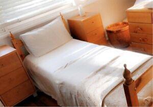 Single/Twin size Solid Cedar Wood Timber bedroom set