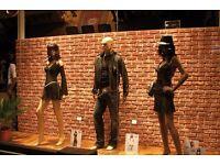 Wall Panels 3d RESIN COATED bricks 110cm X 56cm STUNNING REAL bricks cladding rendering £ 15 each