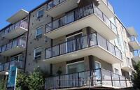 Welcome to White Plains Manor 2620 - 16 Street SW, Calgary, AB