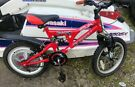 "Bike TROJAN MAGIC KIDS BIKE 16"" IN VERY GOOD CONDITION"