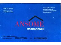 General maintenance, decorator, painter, plumber boilers(gas safety registered).Roof repairs.