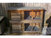 For sale rabbit/guinea pig cage/hutch. Only had it a year from new.