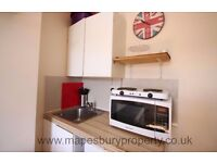 Cricklewood Studio Available Now in NW2 - Ideal for Professional - Wooden Flooring - Own Shower Room