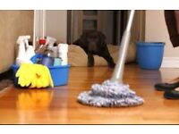 PROFESSIONAL CLEANING SERVICES: Domestic and Commercial Cleaning
