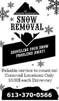 Snow Removal Anytime it Snows 10$!