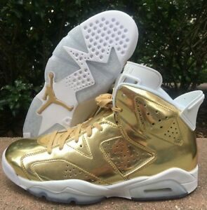 Jordan Retro 6 Pinnacle