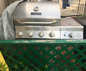 Master Forge Stainless Steel BBQ (propane with option for gas)