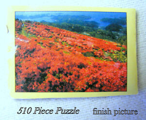 Jig Saw Puzzle, 510 pieces, all about same size, I can't do it