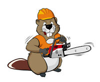 Tree Service Sault Ste Marie and algoma district