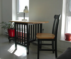 Cute little  table, with chair and lamp. $75 for everything.