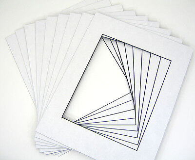 20 11x14 White w/ Blackcore for 8x10 + backing + bags