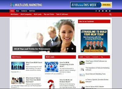 Established Clickbank Affiliate Blog Website-mlm Marketing Niche