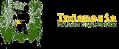 Indonesia Culture Exploration Inc,