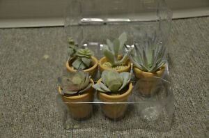 Variety of terra cotta  & plastic bowls for plants Strathcona County Edmonton Area image 2