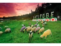 Earn up to £500 @ * Latitude Festival * 13 - 18th July...