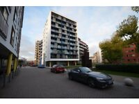 Luxury 1 bed apartment, gym, swimming pool, 24 hr concierge- 12 minutes to Canary Wharf