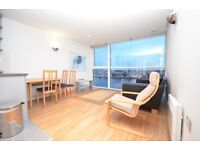 Dock Views, stunning apart,emt, gym, concierge, 15 minutes to Canary Wharf