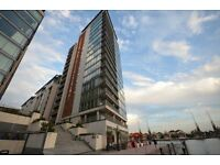 Superb apartment with Dock views, Capital East Apartments, 10 minutes to Canary Wharf