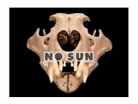 NO SUN - New Heavy Rock outfit looking for drummer
