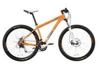Voodoo Aizan 29er Mountain Bike