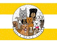 Dog Walker / Pet Sitter serving S8 and surrounding areas