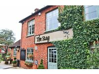 Sous Chef for busy country pub