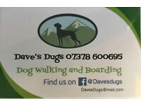 Dog walking and boarding FALKIRK