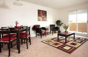 Bayridge Court - 1 Bedroom Apartment for Rent Kingston Kingston Area image 1