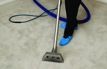 Sydney Carpet  Steam Shampoo Cleaning Sydney City Inner Sydney Preview