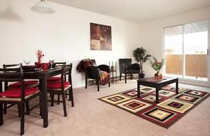 Bayridge Court - 3 Bedroom Apartment for Rent Kingston Kingston Area image 2