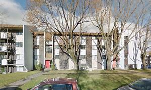 4 1/2 Université LAVAL, CEGEP Ste-Foy, Pyramide