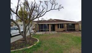 Beautiful and spacious family house to rent in Thornlie Thornlie Gosnells Area Preview