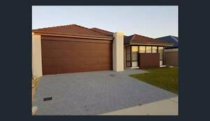 AMAZING MODERN FAMILY HOME FOR RENT Karnup Rockingham Area Preview